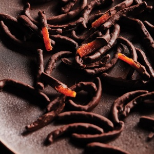 Choc-Coated Candied Orange Rind